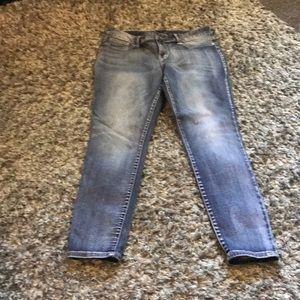 Maurice's Jeans Size XL-Reg